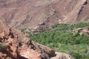 Omgeving Skoura Marokko