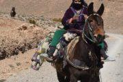 Lokale bewonster Marokko