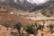 Midden Atlas Marokko