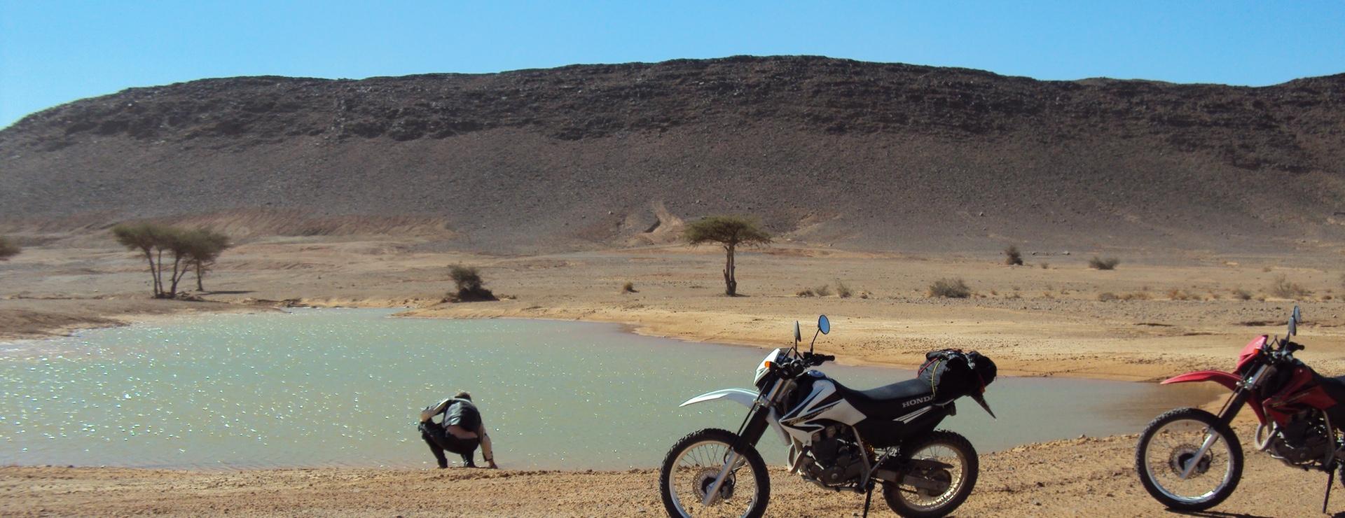 Oase omgeving Tazarine marokko